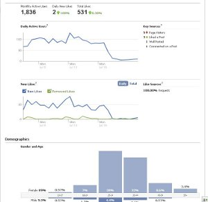 Ανάλυση facebook insights